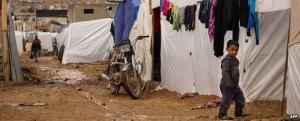 Conflito na Síria: WFP suspende ajuda para refugiados