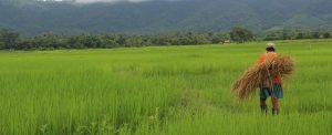 Sudeste Asiático: palavras de vida eterna
