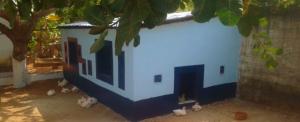 Guiné-Bissau: gratos pelos primeiros frutos
